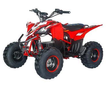 Электроквадроцикл MOTAX E-PENTORA 1500W NEW