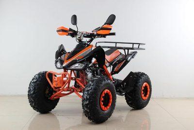 MOTAX ATV T-Rex Super LUX 125 cc. Бензиновый квадроцикл с родительским контролем.